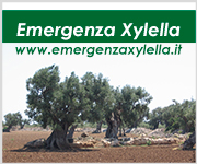 Footer Banner Xylella